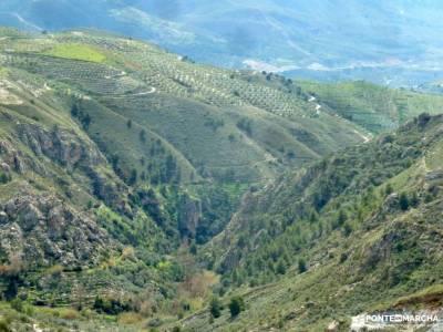 Alpujarra Granadina-Viaje Semana Santa;sigüenza medieval imagenes de senderismo puerto de navacerra